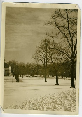 Photo of Druid Hill Park and the conservatory from Max Polt's family home on Auchentoroly Terrace prior to 1941. Courtesy of Leslie and Audrey Polt. 2011.50.5