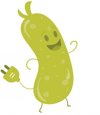 Pickle_logo4
