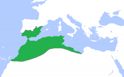 The Almohad Caliphate map