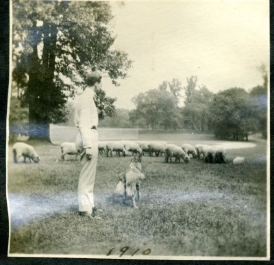 A member of the Weinberg family, with the family dog, in Druid Hill Park, 1910.  (The park's flock of sheep play a role in the book.)  Donated by Jan L. Weinberg. JMM 1996.50.27k.6