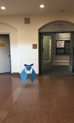 Evidently, the JMM has a bit of a Zubat infestation.