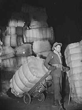 Bales of rags. Shapiro Company, Baltimore, Maryland, 1942