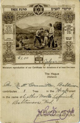 Postcard certificate for the purchase of a tree for the Jewish National Fund, Tree Fund, 1919. JMM 1988.99.1
