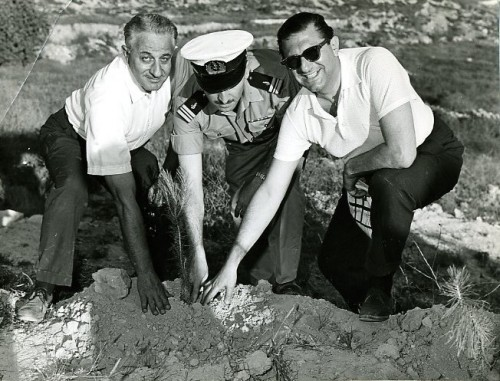 U.S. Admiral L. Kintburger, Baltimore's Harry Diamond and an unnamed Israeli officer plant a tree together in a JNF forest, 1961. JMM 1989.80.29