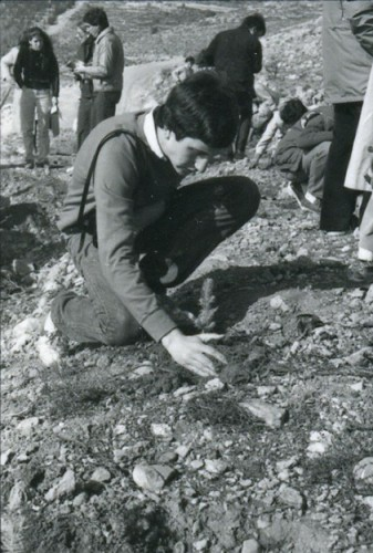 Young Marylanders participate in planting trees while on an Associated Jewish Charities sponsored Mission to Israel. JMM 1995.189.392a