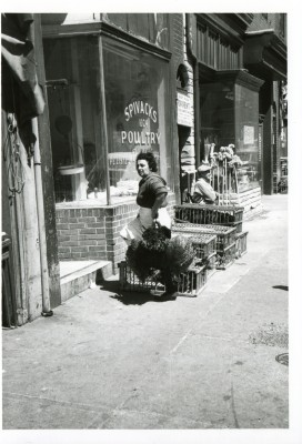 Hyman Brotman's daughter Sylvia Brotman Spivak outside the poultry shop that she ran with her husband. Photograph by John McGrain. JMM 1995.187.13