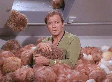 Kirk in a pile of Tribbles